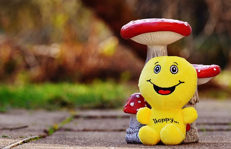 Happy plush toy beside mushroom on floor